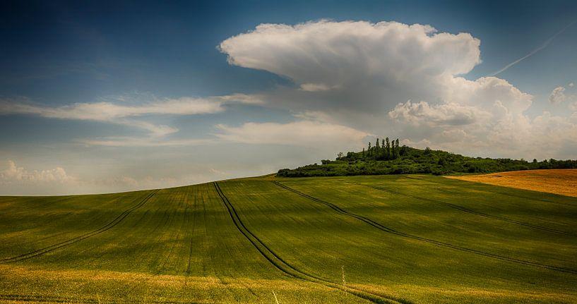 Glooiende velden in de Auvergne van Lily Ploeg