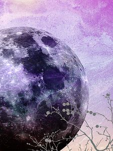 MOON under MAGIC SKY VII-2