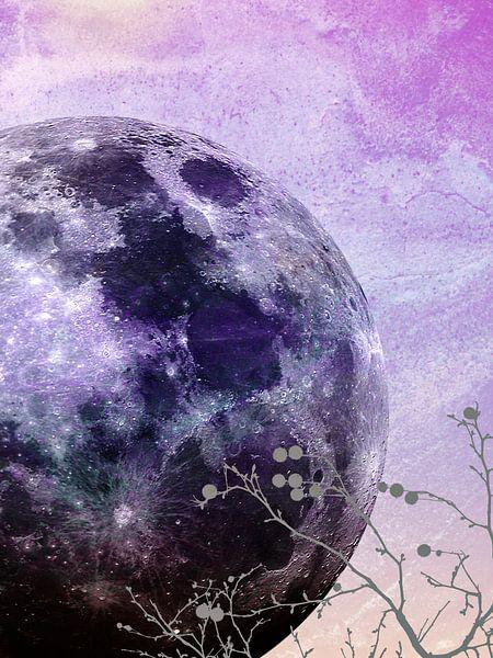 MOON under MAGIC SKY VII-2 van Pia Schneider