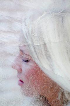 Caugt in ice van Hannie Kassenaar