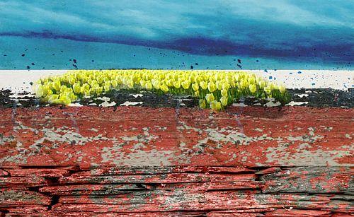 Nederlandse driekleur met tulpen