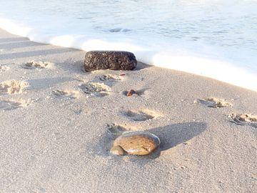 Strandspaziergang von Daniela Tchinitchian Photography