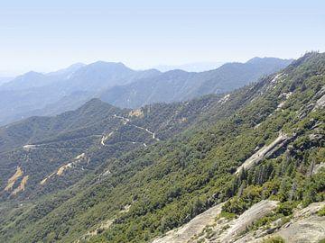 Pics montagneux boisés en Amérique sur Achim Prill