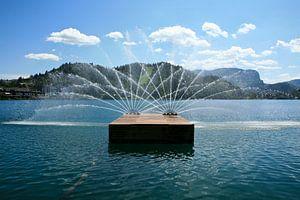 Bled fontein van Dennis Hens