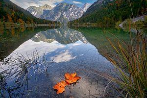 Plansee Herbst