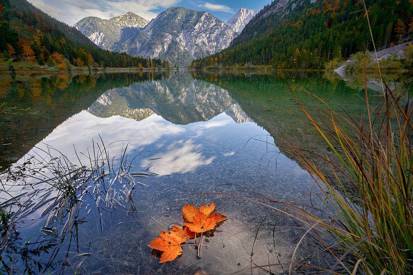 Plansee Herbst von Einhorn Fotografie