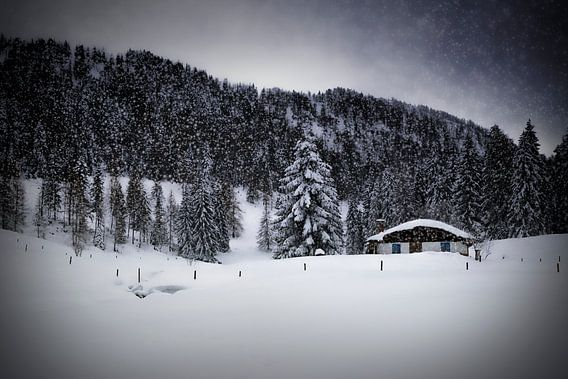 Wintermärchen HEMMERSUPPENALM VIII