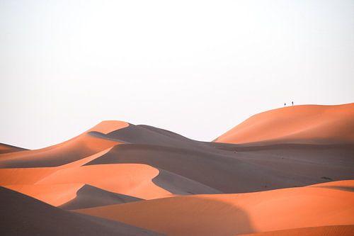 Klein in de Sahara