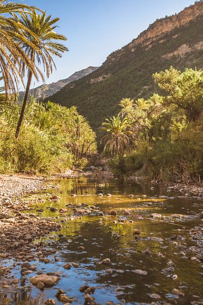 Paradise Valley van Andy Troy