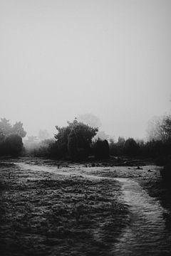 Stoer winters landschap van het Junner Koeland van Holly Klein Oonk