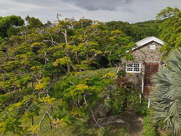 Fairview Great House & Botanical Garden op Saint Kitts & Nevis van Raymond Wijngaard