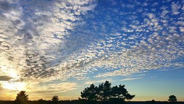 Schapenwolken op de Veluwe  van Aalt Hofman