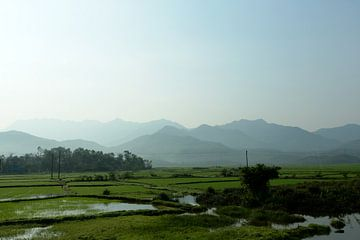 Rice paddies and mountains in Vietnam von Gijs de Kruijf