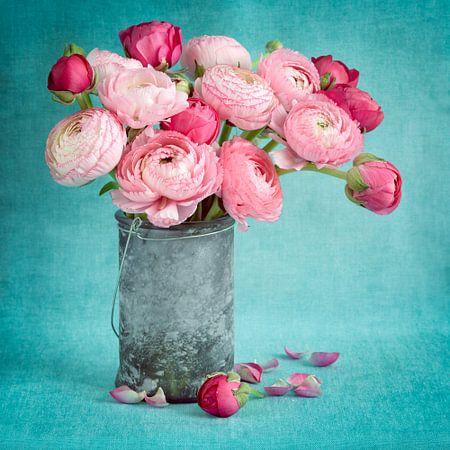 Pink ranunculus flowera in a vase.