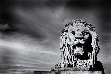 Löwen-Skulptur der Szechenyi Kettenbrücke Budapest von Andreea Eva Herczegh
