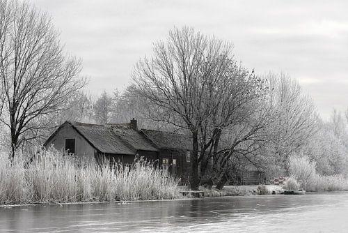 Winter tafereel langs de boezem in Groot Ammers van