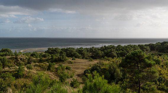 Uitzicht over de Waddenzee vanaf het Vuurboetsduin