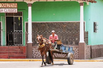 Paard en wagen - Granada van Frank Smetsers