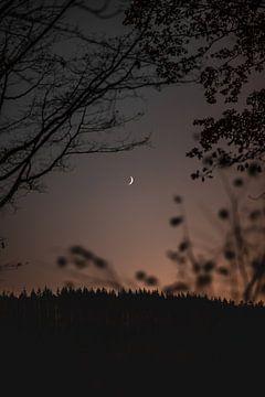 Gewoon de maan