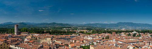 Lucca van