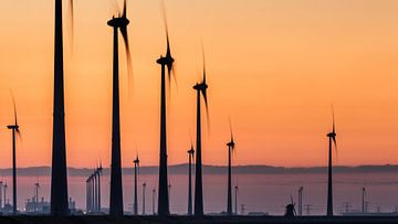 Poldermolen Goliath tussen moderne windturbines - Eemshaven van