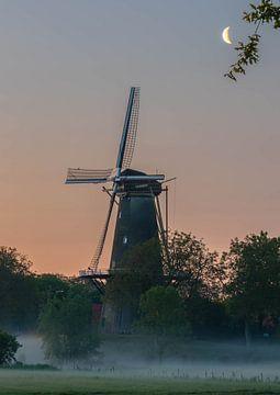 Mondlichtmühle von Tania Perneel