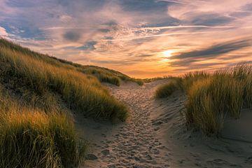 Pad in de zeeuwse duinen van Alex Riemslag