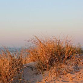 Abendsonne sur Ostsee Bilder