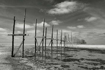 Vliehors | Vlieland von Frank Tauran
