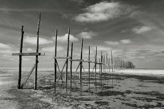 Vliehors | Vlieland