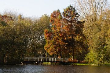 herfst in het park von Robert Lotman