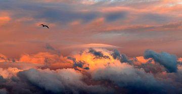 zonovergoten wolken van Jacqueline van Leeuwen