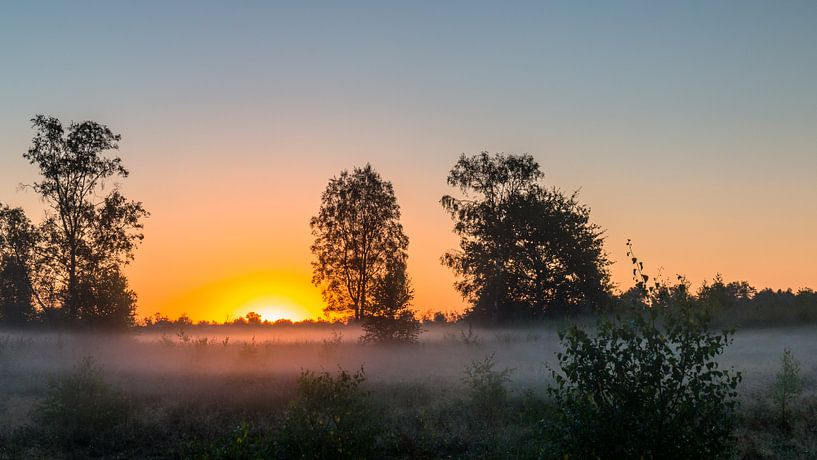Sunrise Mist sur William Mevissen
