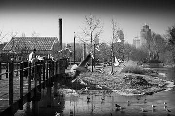 Frankendaelpark Amsterdam Zwart-Wit von PIX URBAN PHOTOGRAPHY