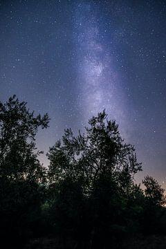De Melkweg / the Milkyway van Jaco Verheul
