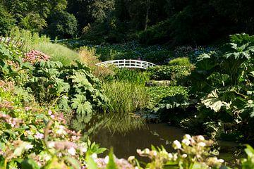 Romantische tuin in Engeland