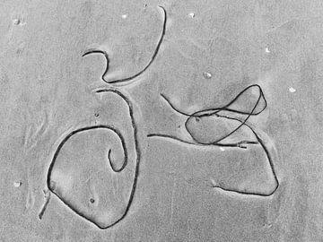 Fiets op strand_Schierblikken_RW_#6 van Bernadette van Beurten | ideeënkunstenaar| SCHIERBLIKKEN |