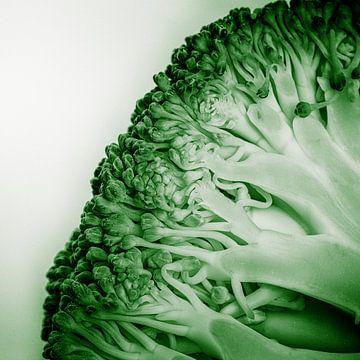 Groenteserie - Broccoli van Wicher Bos