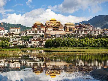 Tibetaans Boeddhistisch klooster van Stijn Cleynhens
