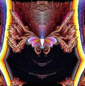 Regenboogvlinder uit het donker naar het licht van Nina IoKa