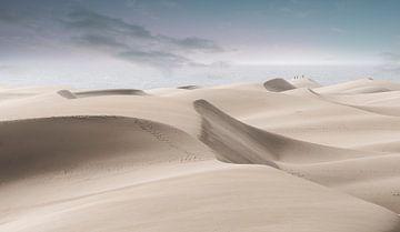 2233  Desert van Adrien Hendrickx