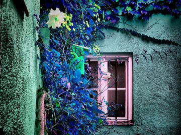 Blaues Fenster  von Ilona Picha-Höberth