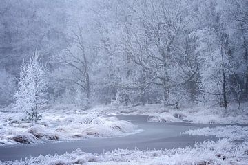Winterlandschaft mit einem gefrorenen Fluss von Karijn Seldam