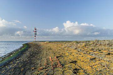 Kleurig najaar op de pier in Lauwersoog von Marnefoto .nl