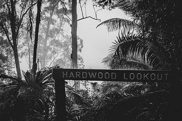 Hardwood lookout van Ennio Brehm