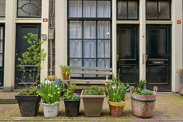 Bloemdwarsstraat Amsterdam von Foto Amsterdam / Peter Bartelings
