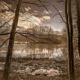 Beautiful nature #2 van Hanneke Bantje