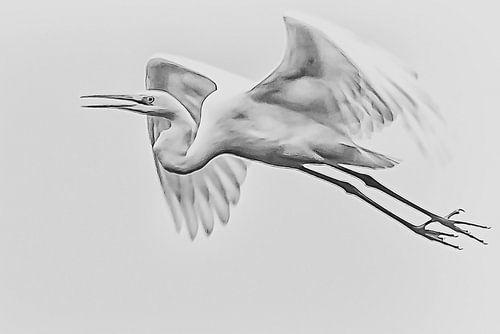 Vliegende zilverreiger van Art by Jeronimo