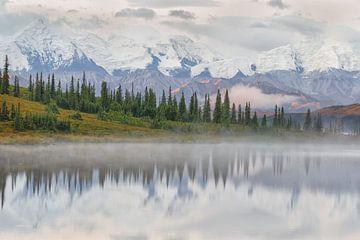 Mount Denali Alaska von Menno Schaefer