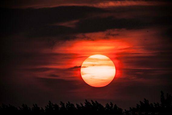 Sunset  van Brian Morgan